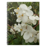 Tropical White Begonia Flowers Notebook