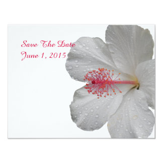 Tropical White Hibiscus Save The Date Cards Personalized Announcement