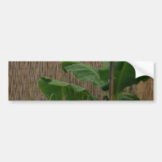Tropical Yard Bumper Stickers