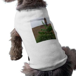 Tropical Yard Pet T-shirt