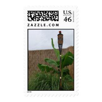 Tropical Yard Postage Stamp
