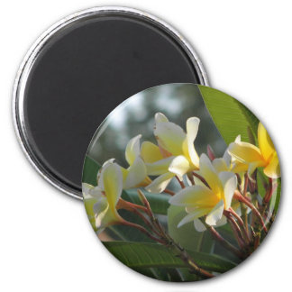 Tropical Yellow and White Flowers Refrigerator Magnet