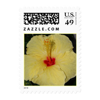 Tropical Yellow Hibiscus Stamps