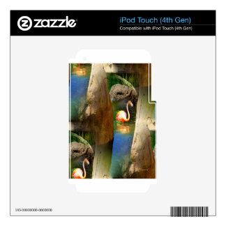 Tropicana Solitude.jpg iPod Touch 4G Calcomanía