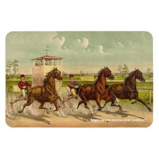 Trotting horses Premium Magnet