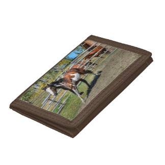 Trotting Paint Pinto Ranch Horse Equine Photo Tri-fold Wallet