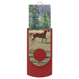Trotting Sorrel Horse Equine Action Photo Swivel USB 2.0 Flash Drive