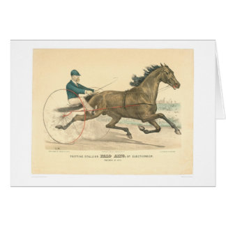 Trotting stallion Palo Alto by Electioneer (1791A) Card