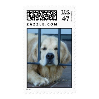 Troublesome Tess Postage Stamp