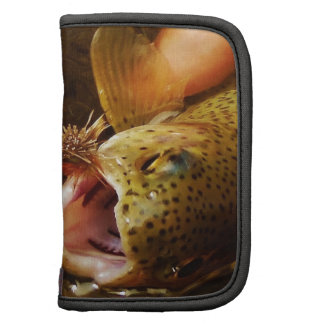Trout and Fly Organizers