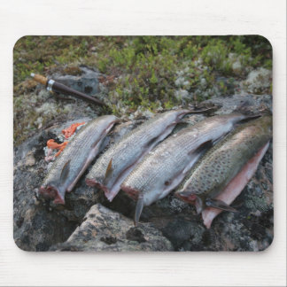 Trout and grayling, Norway Mouse Pad
