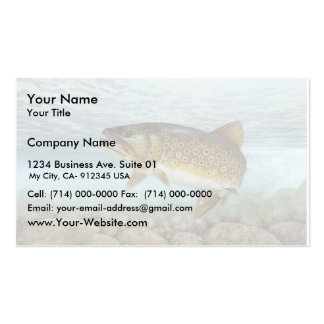Trout, brook Double-Sided standard business cards (Pack of 100)