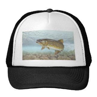 Trout, brook trucker hat