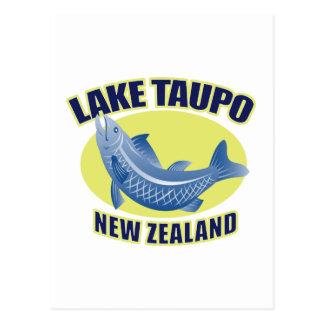 Trout fish lake taupo new zealand postcard