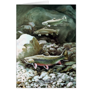 Trout Fish Note Card