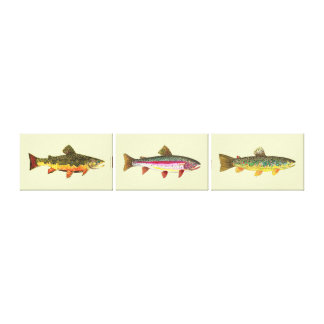Trout Fishing Stretched Canvas Print