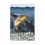Trout Fishing Cross-Section - Sun River, Postcard