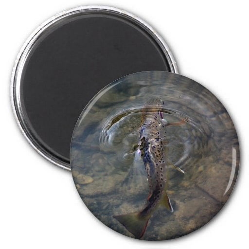 Trout Fishing Magnet