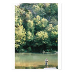 Trout Fishing Postcards