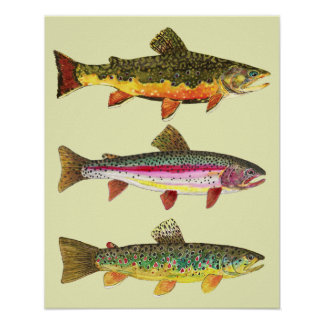 Trout Fishing Poster