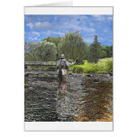 trout fly fishing cards