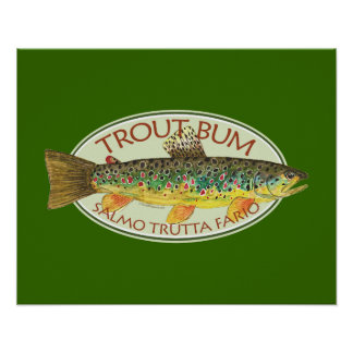 Trout Fly Fishing Posters