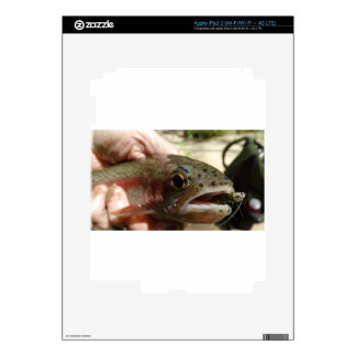 Trout in Hands Decal For iPad 3