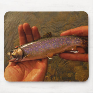 Trout in Hands Mouse Pad