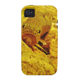 Trout in stream iPhone 4/4S cover