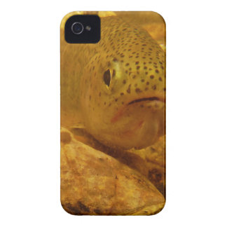 Trout in stream Case-Mate iPhone 4 cases