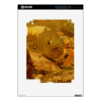 Trout in stream decal for iPad 2
