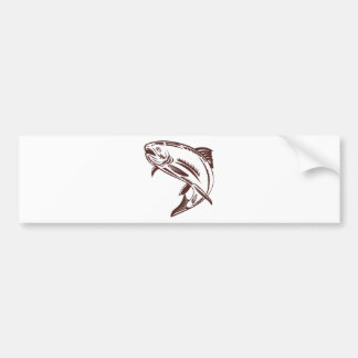 trout jumping isolated on white bumper sticker