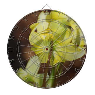 Trout Lily Dartboard With Darts