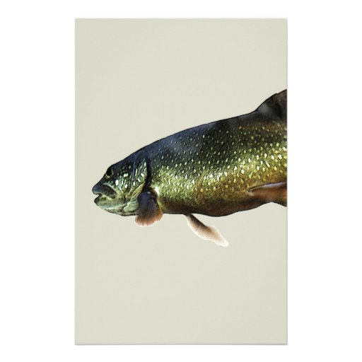 Trout on Beige Stationery