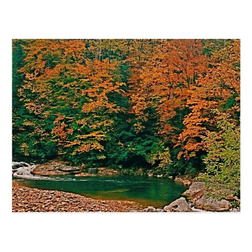 Trout Stream, West Virginia Post Cards