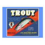 Trout Vintage Apples Label Postcard