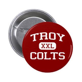 Troy - potros - High School secundaria de Troy - T Pins