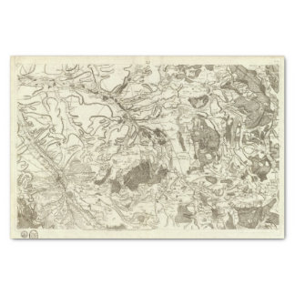 """Troyes 10"""" X 15"""" Tissue Paper"""