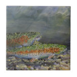 Trucha arco iris azulejo cuadrado pequeño