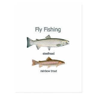 Trucha arco iris de la pesca con mosca - trucha tarjeta postal