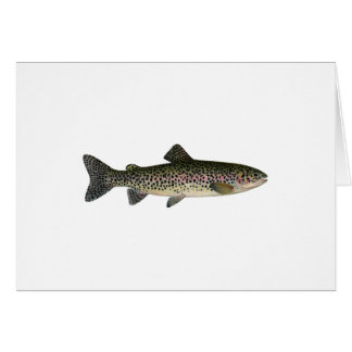 Trucha arco iris (Great Lakes) Tarjeta De Felicitación