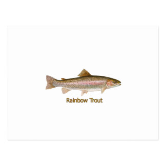 Trucha arco iris (titulada) tarjeta postal