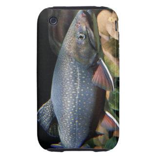Trucha de arroyo - cubierta del iPhone 3G 3GS iPhone 3 Tough Protector