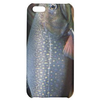 Trucha de arroyo - cubierta del iPhone 4 4S