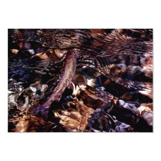 """Trucha de arroyo en el río invitación 5"""" x 7"""""""