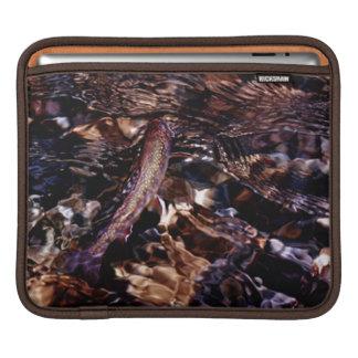 Trucha de arroyo en el río mangas de iPad