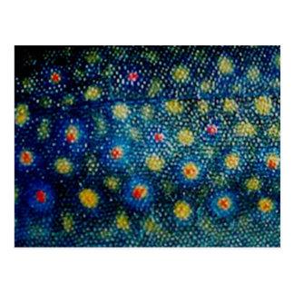 Trucha de arroyo por PatternWear© Tarjetas Postales