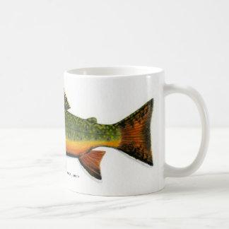 Trucha de arroyo   … taza básica blanca