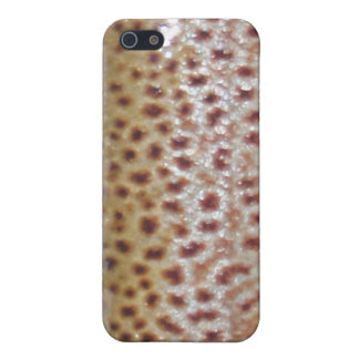 Trucha de Brown - caso del iPhone 4 4S iPhone 5 Coberturas