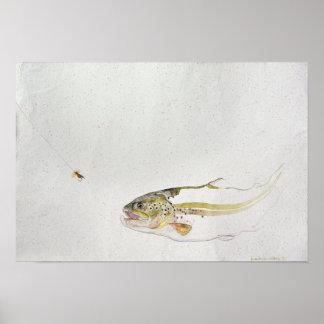 Trucha que persigue la mosca de un pescador póster